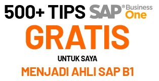 500+ Tips SAP Business One Tips
