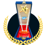 Best SAP Hana Partner 2018 STEM (Sterling Tulus Cemerlang)