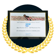 Best Partner SAP Business One 2015