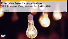 SAP Business One HANA Enterprise Search Customization