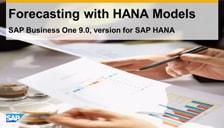SAP B1 HANA Models