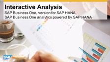 SAP Business One HANA Interactive Analysis
