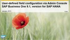 SAP Business One Hana User Defined Field Configuration Via Admin