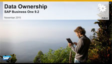 SAP Business One 9.2 Data Ownership