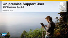 SAP Business One 9.2 On Promise Support User