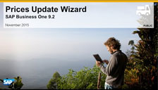 SAP Business One 9.2 Prices Wizard