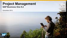 SAP Business One 9.2 Project Management