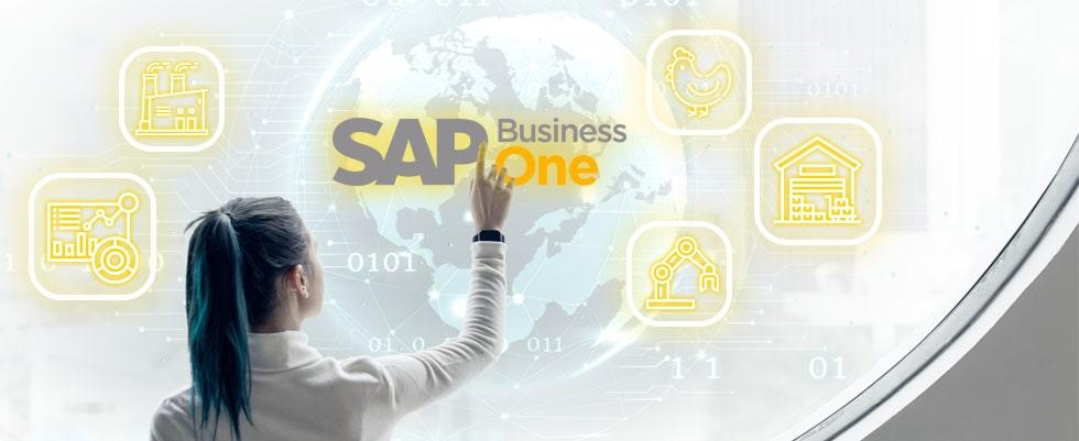 Penambahan SAP Business One Add on