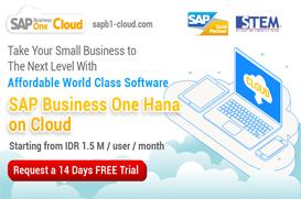 SAP Business One Hana on Cloud