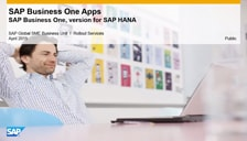 SAP Business One Apps for the version fo SAP HANA