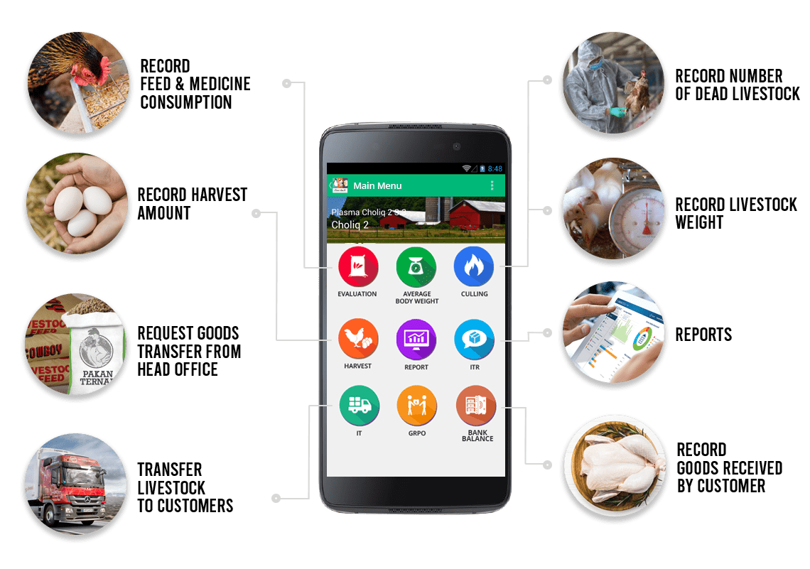 sap business one indonesia solution for Poultry farm flock using mobile android - by stem SAP Gold Partner Indonesia