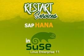 SAP Business One Tips - Restart Services SAP Hana in Suse Linux-enterprise-11
