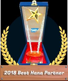 STEM Award SAP Business One Best Hana Partner 2018